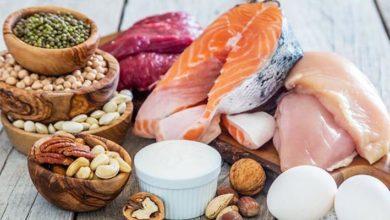 ¿Qué debemos consumir: Proteína Vegetal o Animal?